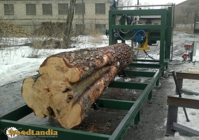 Duo-550 sawmill can mill big logs